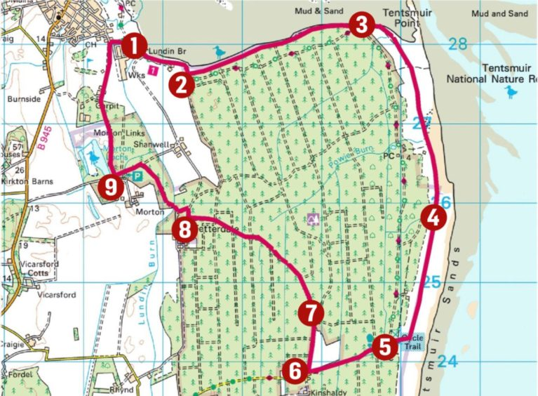 A map detailing the 9 main points of the Tentsmuir Forest walk