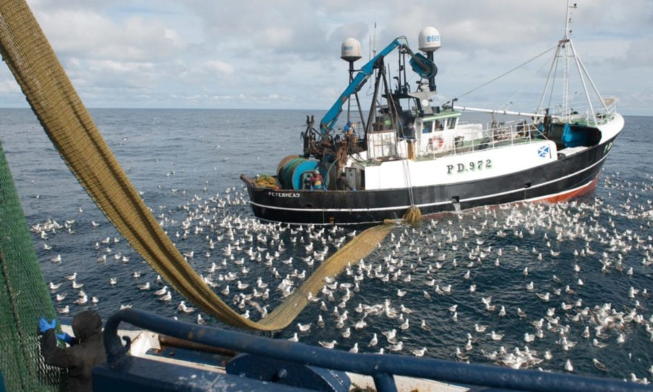 Fishing groups are calling for a new panel to be set up