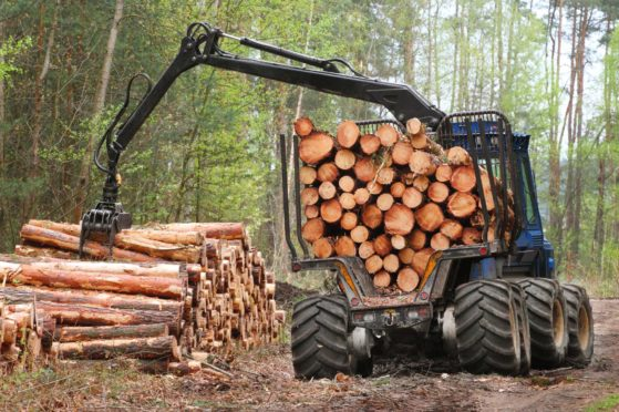 The cost of wood has increased significantly.