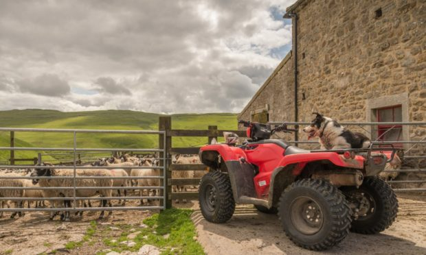 The latest HSE figures reveal 41 people were killed on farms in Great Britain last year.