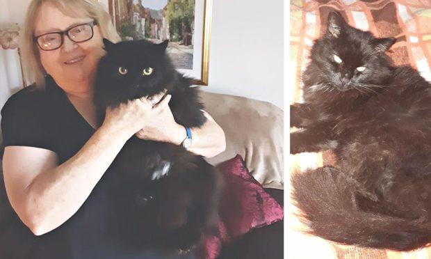 Linda with runaway cat Star