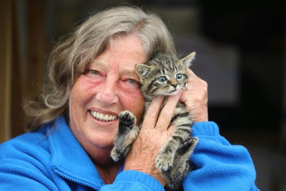 Arbroath Cats Protection officer Laura Robertson and kitten May. Gareth Jennings/DCT Media