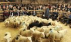 The report estimates there are 142 livestock marts in operation across the UK.