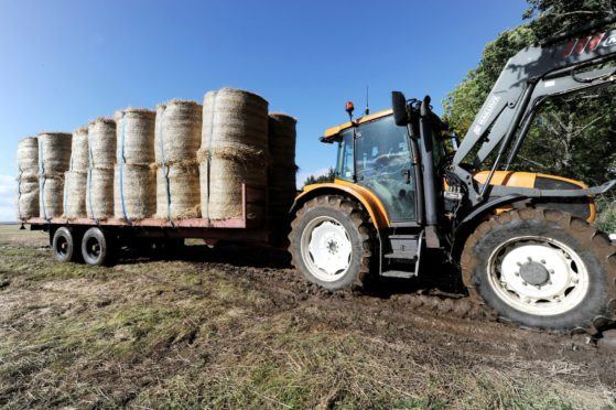 Forage Aid warns supplies of straw could be short this year.