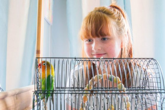 Grace Murray, 10, happy to be reunited with Scooter after nearly eight months.