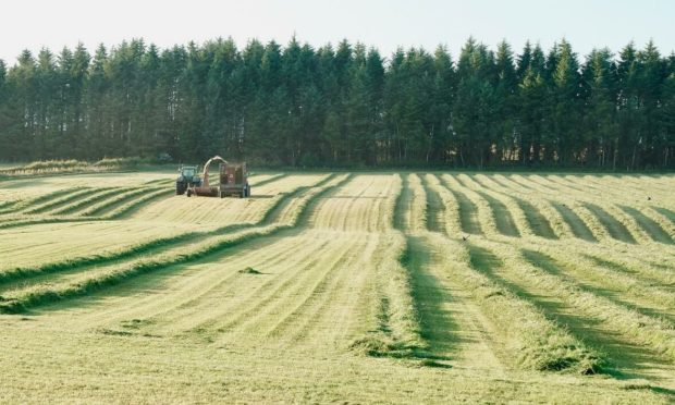 NFU Scotland says its paper is a framework for future agricultural policy in Scotland.