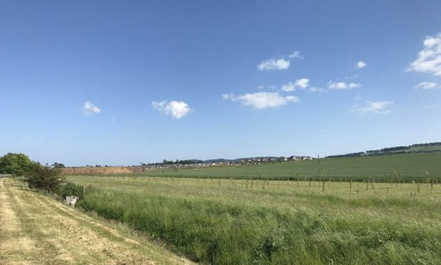 The Strathmore Fields development would extend west towards the Forfar bypass. Pic: Graham Brown/DCT Media