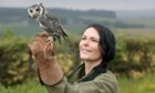 Gayle meets white-faced scops owl, Lana, at Speyside Falconry.