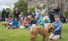 Inaugural Paws at the Palace dog festival at Scone Palace.