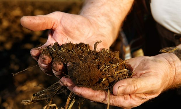 Soil carbon has become central to the climate change debate.