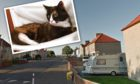 Lily died near her home in Methilhill.