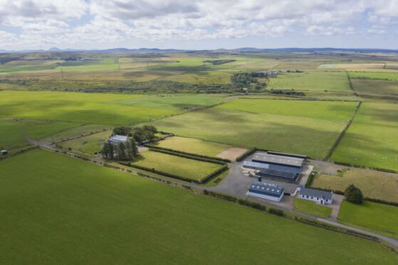 The farm is available to buy as a whole.