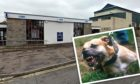 The pensioner was attacked by a Staffordshire bull terrier at the cash line in Kirkcaldy.