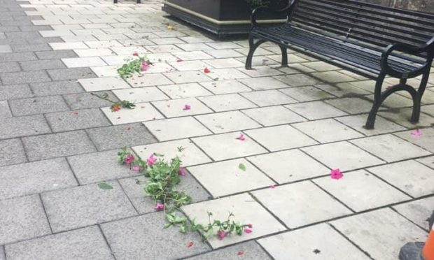The flowers scattered on East High Street after the vandals struck
