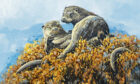 Rest Stop Otters by Derek Robertson
