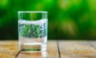Sparkling water sales are on the rise.