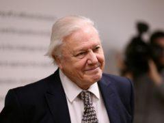 Sir David Attenborough topped the poll (Chris Radburn/PA)