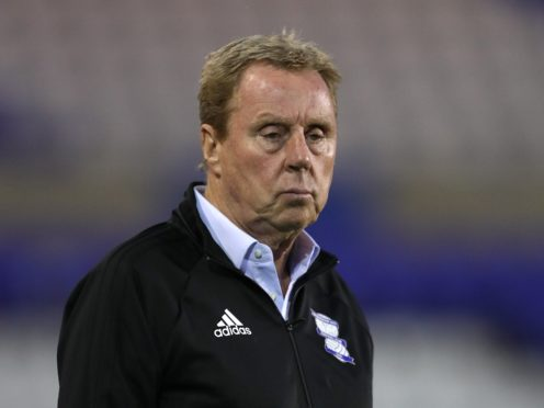 Harry Redknapp will take on the Deadly Dash Bushtucker Trial (David Davies/PA)