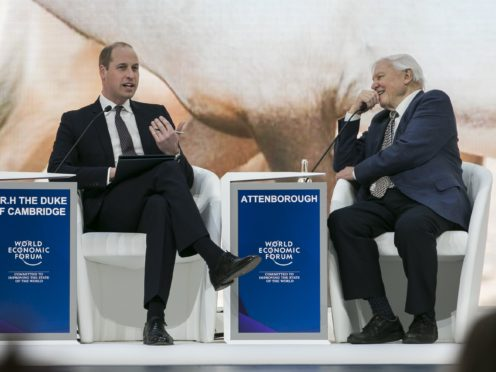 Sir David Attenborough met the Duke of Cambridge in Davos (World Economic Forum/Benedikt von Loebell/PA)