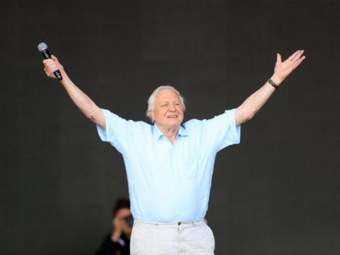 Sir David Attenborough (Aaron Chown/PA)