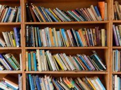 Books on a bookshelf (Ryan Phillips/PA)