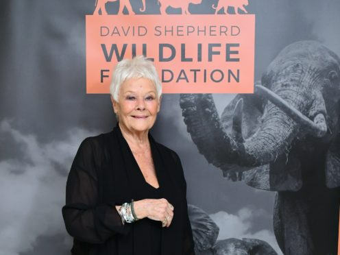 Dame Judi Dench says she has not read any reviews for the much-derided Cats (Ian West/PA)