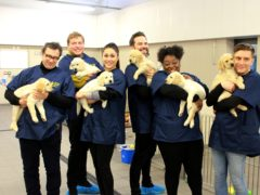 (Guide Dogs/PA)