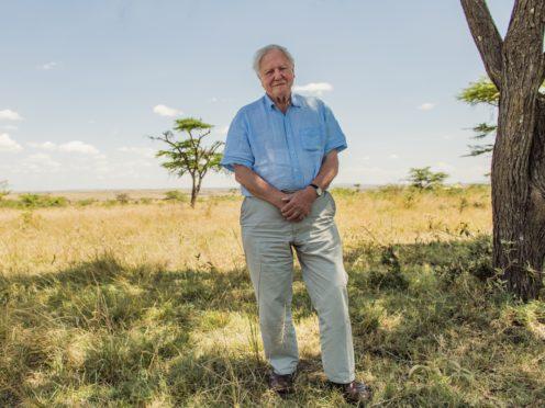 Sir David Attenborough pictured in the Maasai Mara (Keith Scholey/Silverback Films/PA)