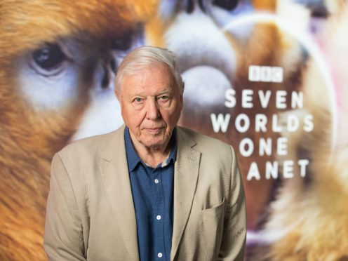 Sir David Attenborough has won an Emmy Award for his work narrating the BBC documentary Seven Worlds, One Planet (David Parry/PA)