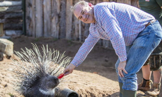 Liberal Democrat leader Ed Davey feeds one of the Cape porcupines during a visit to Fife Zoo in Cupar.