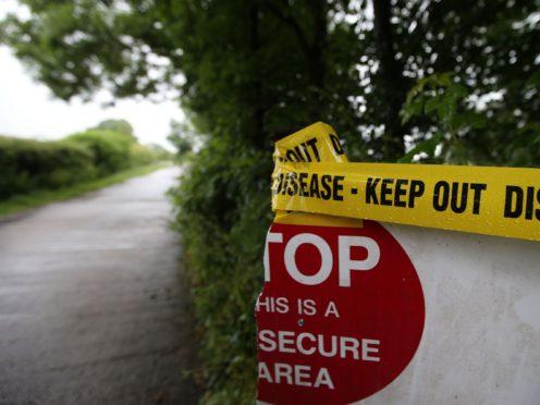 Birds culled after bird flu outbreak (Lynne Cameron/PA)