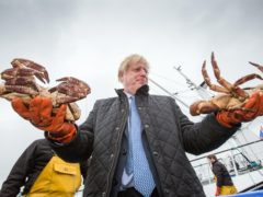 Scottish Seafood Association chief executive Jimmy Buchan said Boris Johnson's UK Government has done a lot of work but the country is 'simply not ready or prepared enough' for Brexit (Robert Perry/PA)