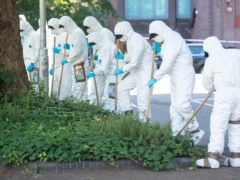 Forensics officers carrying out a search near Forbury Gardens following the stabbing (Dominic Lipinski/PA)