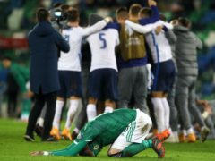 Northern Ireland suffered despair as they were beaten by Slovakia at Windsor Park (Brian Lawless/PA)