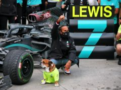 Lewis Hamilton secured his seventh world championship in Turkey (PA Wire)