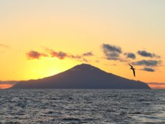 Tristan da Cunha is one of the most remote island groups on Earth (Andy Schofield/RSPB Images/PA)