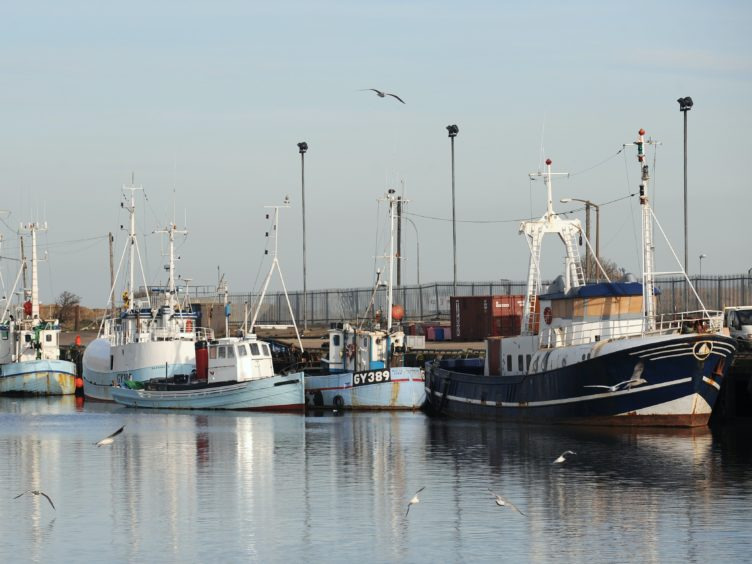 Fishing trawlers moored at Grimsby Docks (Anna Gowthorpe/PA)