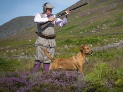 The survey took information from 23 grouse moor estates (Jane Barlow/PA)