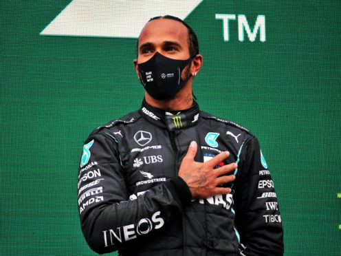 This year was the year Lewis Hamilton ripped up Formula One's record books (PA Wire)