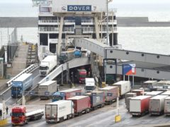Ferry services at Dover are being halted (Gareth Fuller/PA)