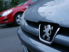 The lion emblem on the front grille of a Peugeot car (Yui Mok/PA)