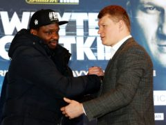 Dillian Whyte was knocked out by Alexander Povetkin during their first fight (Martin Rickett/PA)