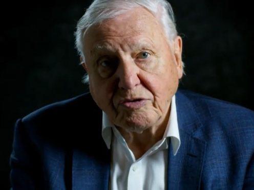 Sir David Attenborough (WWF/PA)
