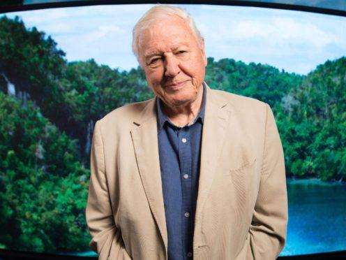 Sir David Attenborough (David Parry/PA)