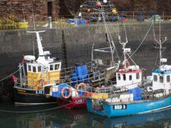 EU ambassador: fish export problems show that Brexit decisions have consequences (Jane Barlow/PA)