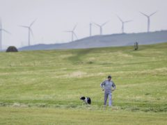 A man walking his dog near Whitehaven in Cumbria (PA)