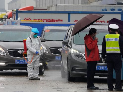 A worker in protective overall disinfects a vehicle from the World Health Organisation convoy while they were visiting the Baishazhou wholesale market (Ng Han Guan/AP)