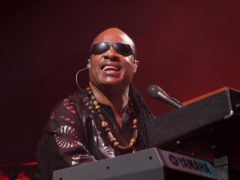 Stevie Wonder led the celebrities marking Martin Luther King Jr Day as he decried the US's 'lack of progress' on equality (Yui Mok/PA)