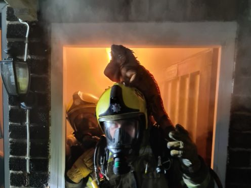 A reptile mat in the living room started the blaze, firefighters said (Northamptonshire Fire and Rescue)
