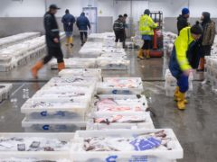 Funding has been announced to help support the seafood and fishing sectors impacted by Brexit and coronavirus (Michal Wachucik/PA)